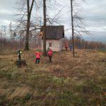 Kamenný domek býval v hustém lese, což se jaksi zásadně změnilo
